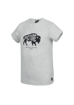 Tee Shirt Picture Dawson Light Grey Melange