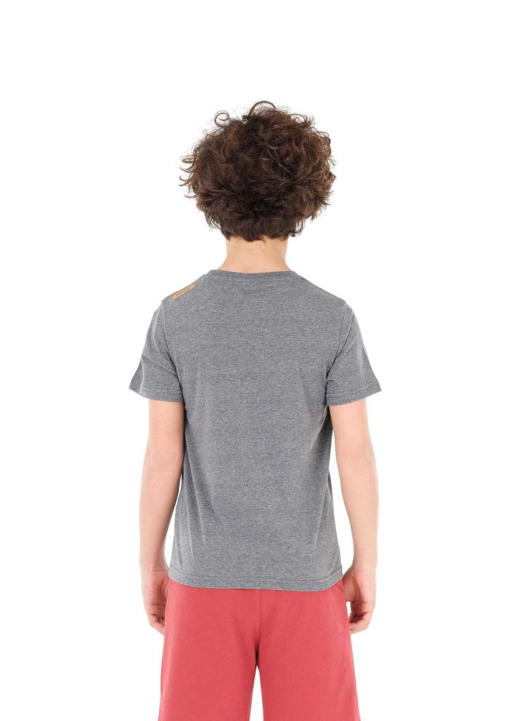 Tee shirt  Picture  NOUGAT Dark Grey