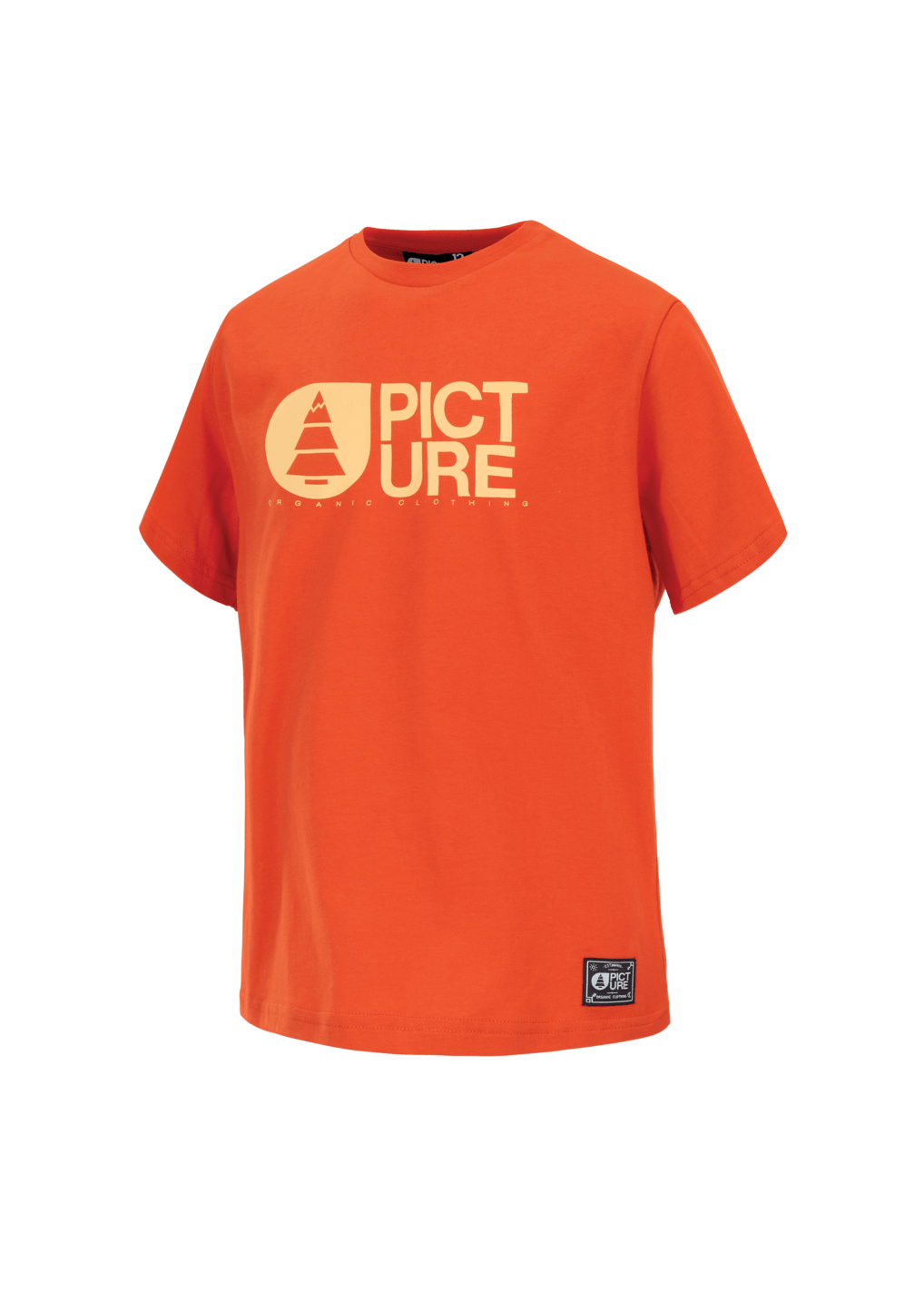 Tee Shirt Enfant Picture Basement Burnt Orange